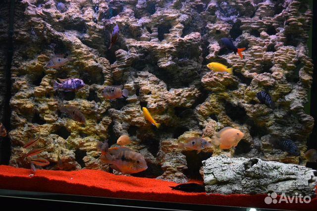 Пещера в аквариуме своими руками
