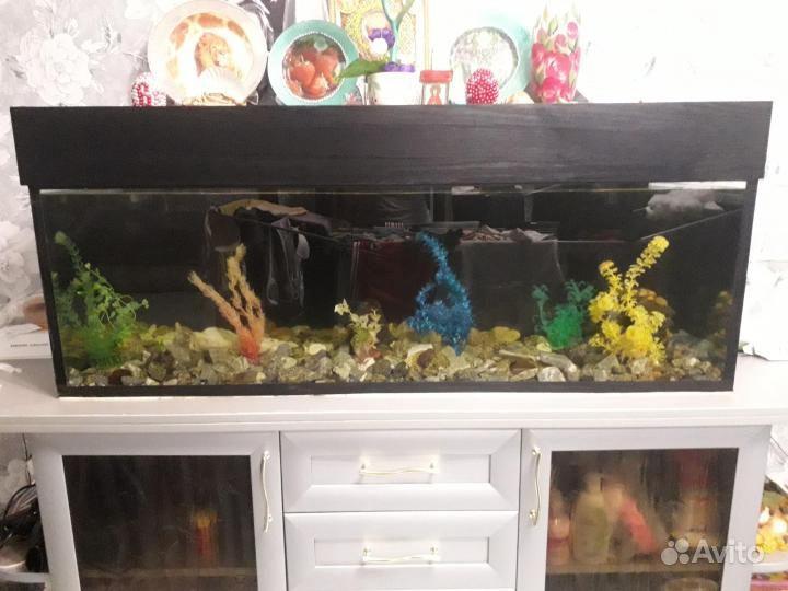 Продажа аквариума купить на Зозу.ру - фотография № 1