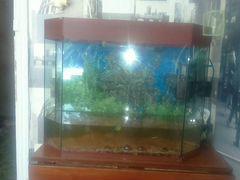 Продам аквариум(нужен ремонт)