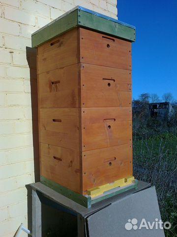 производства купить улей для пчел цена в псковской области Санкт-Петербурге: зима