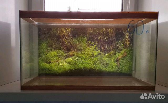 Aquarium 89103112387 buy 2
