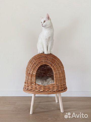 Домик для кота или маленькой собачки  купить 1
