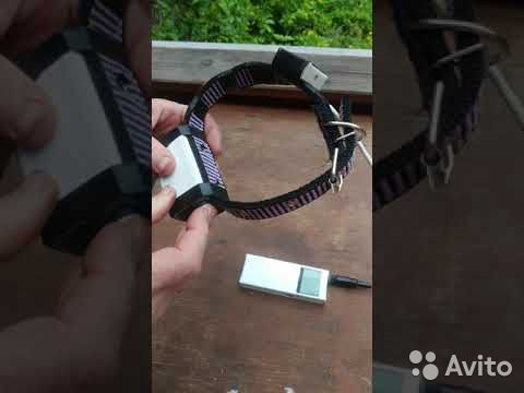 Система слежения за собакой, аналог garmin Astro  89173175566 купить 2